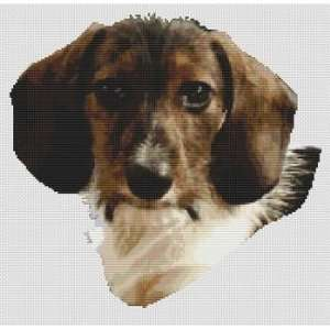 Willie Wirehaired Dachshund   Cross Stitch Pattern: Arts