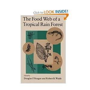Rain Forest (9780226705996): Douglas P. Reagan, Robert B. Waide: Books