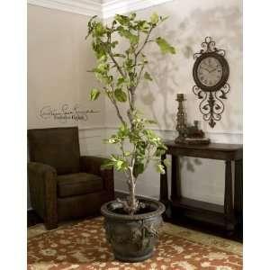 Jordan Valley, Fig Tree: Home & Kitchen
