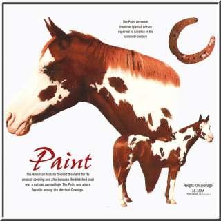 Paint Origin Horse Pony Horseshoe Shirt S 2X,3X,4X,5X