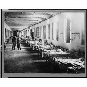 Patients,yellow fever hospital,medical facilities,beds,patient,Havana