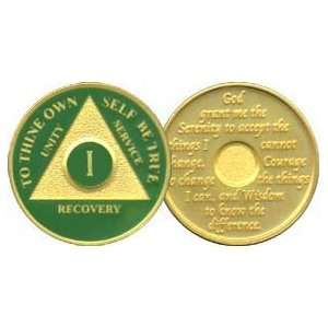 Anniversary Recovery Medallion / Coin / Chip   Green: Everything Else