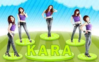 KARA Lupin Kpop Laptop Netbook Sticker Skin Decal Cover