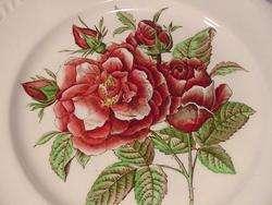 JOHNSON BROTHERS OLD FLOWER PRINTS ROSE DINNER PLATE(S)
