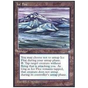 Magic the Gathering   Ice Floe   Ice Age Toys & Games
