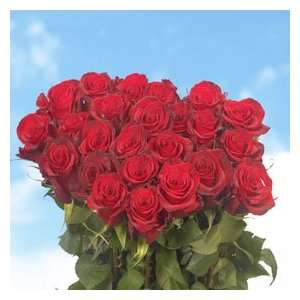 75 Long Stem Roses Red Paris Roses Beautiful  Grocery