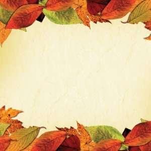 Autumn leaf borders 12 x 12 paper arts crafts amp sewing