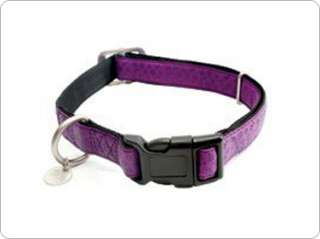 BARK AVENUE DOG COLLAR FAUX LEATHER PINK, PURPLE, BLUE 759023086262