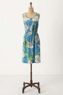 Anthropologie   Calliope Dress