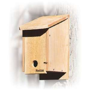 Blue Bird Roosting Box