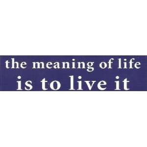 The Meaning of Life Is to Live It   Mini Sticker