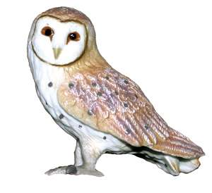 NEW* CollectA 88003 Barn Owl Bird Replica Model 4cm