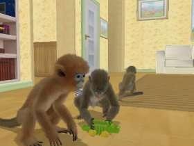 Petz   Die Affen sind los  Games