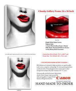 X178 VAMPIRE ART BIG RED BLOOD DRIPPING LIPS CANVAS PRT