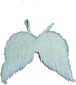 Feather Angel Wings Costume (Accessories)