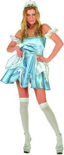 Adult Sexy Cinderella Costume Small/Medium