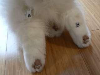 FurReal Pet Friend White Kitty Cat 13 Rare 2006 Fluffy