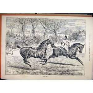 1886 Horse Running Away Man Catching Jumping Hunting: Home