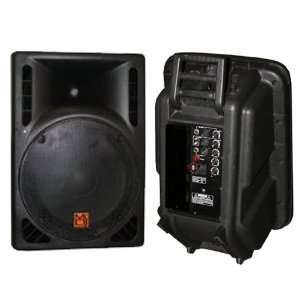 Mr. Dj PBS1605AMP Powered Speaker Cabinet, Black Musical Instruments
