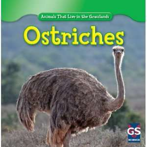 Ostriches (Animals That Live in the Grasslands