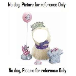 American Girl Coconuts Birthday Party Accessories (dog NOT included