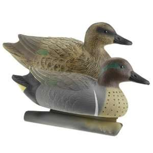Academy Game Winner Hunting Gear Green winged Teal Decoys 12 Pack