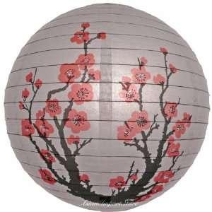 14 Japanese Plum Tree Paper Lantern: Kitchen & Dining